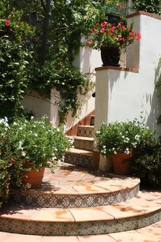Malibu Tile Works Portfolio: Stair Risers, Fireplaces, Tile Rugs, Etc. - Janine Waldbaum - Picasa Web Albums