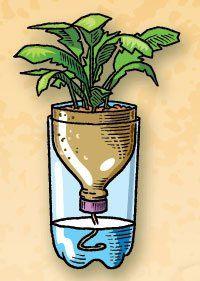 Plastic plant starter