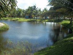 belo lago no Manoa Park, praia de maracajaú, RN