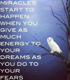 Miracles start to happen when you give as much energy to you dreams as you do to your fears. <3