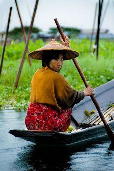 Paddling through the floating farms or Inle on a thamban. #InleLake #Myanmar #travel