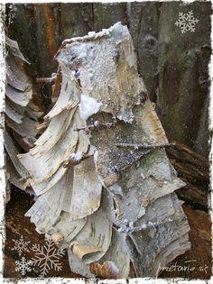 choinka z brzozowej kory