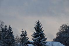 Guten Morgen lieber #Winter ...