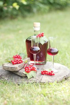 Selbst gemachter Ribisellikoer // Johannisbeerlikoer // homemade currant liqueur // Sweets and Lifestyle Limoncello, World Recipes, Fabulous Foods, Red Wine, Food To Make, Alcoholic Drinks, Berries, Food And Drink, Sweets