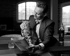 on it's raining men tom hiddleston, toms, t Loki Marvel, Marvel Actors, Marvel Movies, Thomas William Hiddleston, Tom Hiddleston Loki, Beau Gif, Man Thing Marvel, Cat People, Raining Men