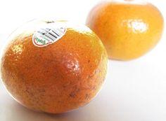 Monthly list for peak season of fruits