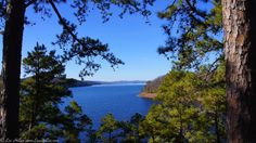 Caddo Bend Trail Lookout at Lake Ouachita State Park Arkansas