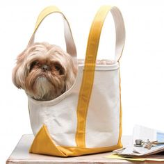 Canvas Tote Doggie Bag..  To make it, use sharp fabric shears to cut a dip into the side of the tote. The depth and width of the U shape will depend on the size of your dog's head, but be sure to leave at least half an inch between the opening and the bag's handles. Cut cotton webbing long enough to cover the U shape. Fold webbing over the raw edge, and use a sturdy needle to hand-stitch it to the opening.