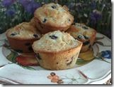 Almond Berry Tarts; almond meal, coconut flour, butter, eggs, blueberries...rich, buttery inside, crisp outside, low glycemic and heavenly!