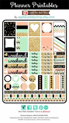 Free Printable Gold, Black, Peach and Mint Planner Stickers from Apple Eye Baby Shop To Do Planner, Passion Planner, Free Planner, Planner Pages, Happy Planner, Planner Ideas, Project Planner, Planner Inserts, Wash Tape