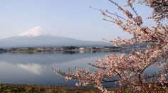 Que ver en Los Cinco Lagos del Fuji 2.0 - I