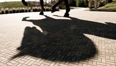 The shadow of the Leos horse in Paris just prior to the start of the Saut Hermes Grand Prix