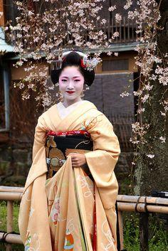 Maiko-san. I love her kimono!