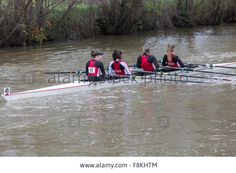 Download this stock image: UBBC Head race, rowing event 2015 - F8KHTM from Alamy's library of millions of high resolution stock photos, illustrations and vectors. Rowing, Vectors, Boats, Illustrations, Stock Photos, Image, Ships, Illustration, Boating