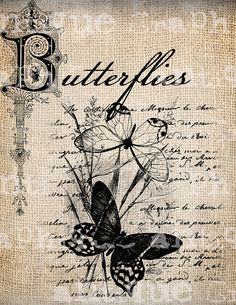 Antique Summer Butterfly French Handwriting Fancy Ornate llustration Digital Download for Papercrafts, Transfer, Pillows Burlap No 2843 via Etsy