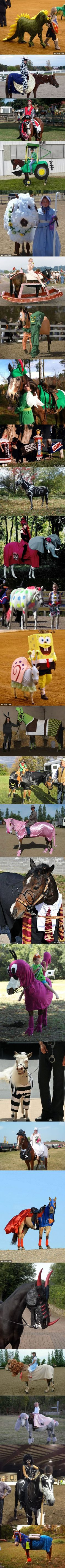26 Creatively Costumed Horses Who Are Masters Of Disguise (shakes fist)