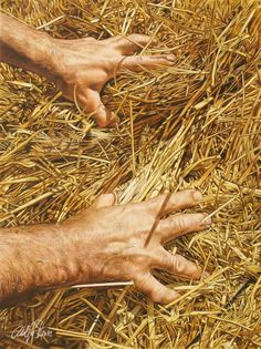 adolfo fernandez rodriguez colored pencil art- I would have lost my mind trying to render all that hay!!