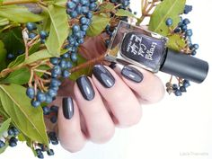 trend it up Trend It Up, Brain And Heart, Natural Nails, Manicure, Nail Polish, Fall, Collection, Ongles, Nail Polishes