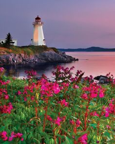 33_10541_Lighthouse_At_Sunset_1000_Piece_Jigsaw_Puzzle_jumbo.jpg 1,000×1,250 pixels