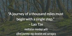 meditation mondays with Gifted Journeys Egg Donation and Surrogacy Agency #giftedjourneys #eggdonation #surrogacy