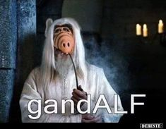 Tags: lord of the rings, gandalf, gandalf the white, The Lord of the points, 17 comments. Funny Shit, Funny Memes, Hilarious, Funny Stuff, Jrr Tolkien, Gandalf Funny, Alien Life Forms, Clean Memes, Humor Grafico