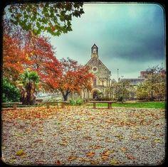 Ronald Márföldi Paints an English Autumn