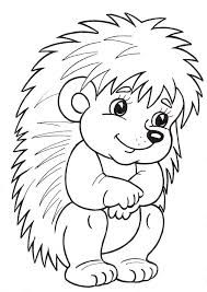 Hedgehog Coloring Page Animal Coloring Pages, Coloring For Kids, Coloring Pages For Kids, Coloring Sheets, Coloring Books, Hedgehog Craft, Mandala Coloring, Digital Stamps, Easy Drawings