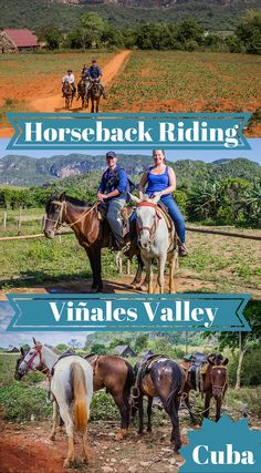 Horseback Riding Vinales Valley Cuba. Viñales, the tobacco soul of Western Cuba, sits in one of the most lush, green valleys we have ever seen. The tiny town has been built up with hundreds of Casa Particulars to house the never ending stream of tourists that want a glimpse at the rural life in Cuba. The best way to do this is by going horseback riding in Viñales National Park. Click to read the full blog post at http://www.divergenttravelers.com/horseback-riding-vinales-valley-cuba/