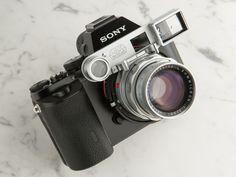 Sony α7  DR Summicron 50mm F2