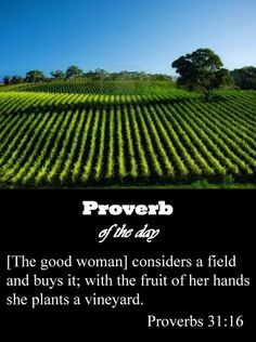She rises while it is still night and provides food for her household and portions for her female servants.  She evaluates a field and buys it; she plants a vineyard with her earnings.  Proverbs 31:15-16