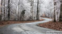 Sue Henry Photography - Blog - County LineRoad