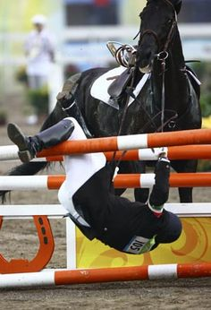 Horse's rock & roll - Sports News - SINA English