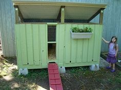 DIY Chicken Coop made with pallets...gonna show this to the inlaws for our Easter chicks!