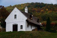 Nádfödeles parasztház a hegy alatt  (Fotó: Taál István)