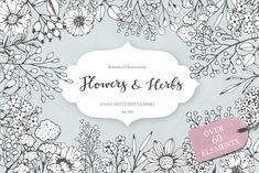Flowers and Herbs by