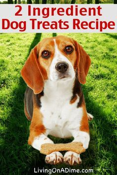 2 Ingredient Dog Treats Recipe