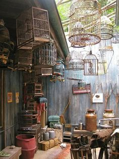 Schnazzy Bird Cages