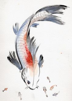 Asian koi paintings the message