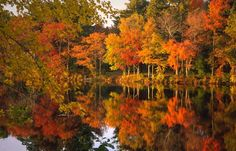 New England, between our Top10 Travel Destinations Fall 2014, check it out!