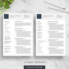 Professional Resume Template For Word  Modern Resume Design With