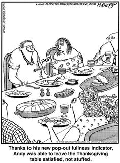 I need one of those damn things! Funny Picture Quotes, Funny Photos, Funny Sayings, Thanksgiving Cartoon, Thanksgiving Crafts, Turkey Jokes, Bizarro Comic, Cute Jokes, Good Morning Funny