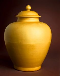 rare Kangxi yellow Jar Feng Shui Earth Element, Shades Of Yellow, China Porcelain, Reign, Interior Decorating, Chinese, Carving, Late Summer, Pottery Ideas