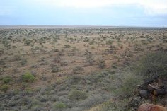 The vast scrub planes at Magersfontein, Kimberley Diamond City, Africans, African History, Monuments, My Eyes, Planes, South Africa, Scandinavian, Battle