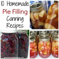 10 Homemade Pie Fillings, Canning Recipes - Info You Should Know