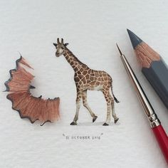 Holy heck are these tiny little paintings amazing. See also the following pins for the artist's website.