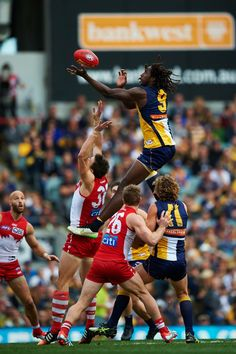 Australian Football League, West Coast Eagles, Western Australia, Rugby, Number, Awesome, Board, Sports, People