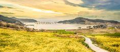 Pictures of Korea | Photo Gallery | Official Korea Tourism Organization