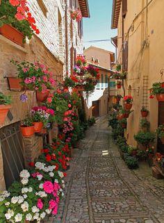 """<p class=""""p1""""></p> <p class=""""p1""""><b>Spello, Umbria - 20 beautiful pictures of Italian streets</b></p>"""