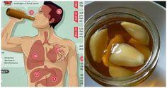 Mira lo qué sucede cuando comes ajo y miel en ayunas durante 7 días, ¡impresionante!