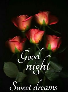 Good Night Images For Whatsapp Good Night Story, Good Night Love Quotes, Good Night Love Images, Good Night Prayer, Cute Good Night, Good Night Friends, Good Night Blessings, Good Night Gif, Good Night Wishes